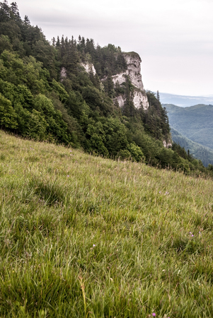 skala: meadow and Majerova skala rocky hill on southeast part of Velka Fatra mountain range in Slovakia