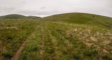mountain meadow: pathway on mountain meadow in Velka Fatra mountains in Slovakia Stock Photo