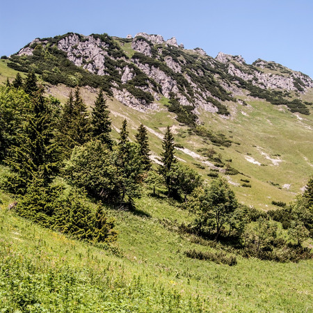 mala fatra: mountain meadow with trees and rocks on Velky Rozsutec hill with clear sky above in Mala Fatra mountain range in Slovakia