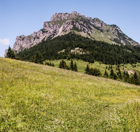mala fatra: Velky Rozsutec hill with mountain meadow on Medziholie mountain pass bellow with clear sky in Mala Fatra mountain range in Slovakia