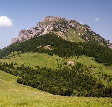 mountain meadow: Velky Rozsutec hill with mountain meadow on Medziholie mountain pass bellow with clear sky in Mala Fatra mountain range in Slovakia