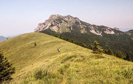 mala fatra: rocky Velky Rozsutec hill from Osnica hill covered by mountain meadow with isolated tree on Mala Fatra in Slovakia