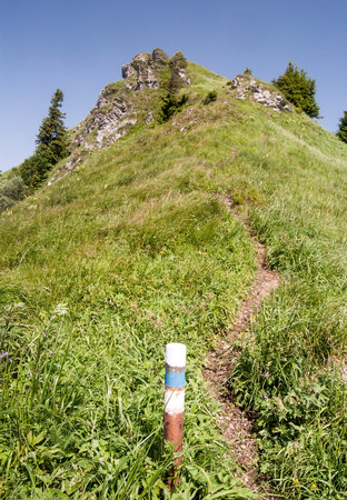 mala fatra: Osnica hillin Mala Fatra mountains in Slovakia with blue colored trail blazing, hiking trail, mountain meadow, small rocks, isolated small trees and clear sky
