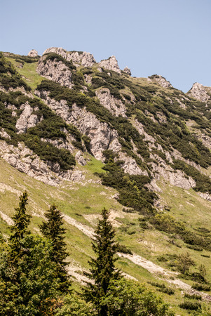 mountain meadow: Velky Rozsutec hill in Mala Fatra mountains with mountain meadow, dolomitian rocks and clear sky