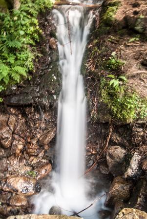 water spring: karst Mlecny pramen water spring near Horni Morava resort in Kralicky Sneznik mountain range Stock Photo