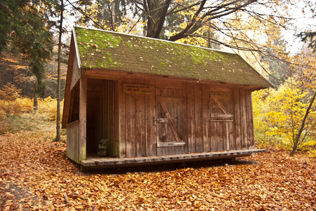 erzgebirge: wooden shelter in autumn forest with fallen leaves in Erzgebirge mountains near Hohe Stein hill on german-czech borders above Erlbach village