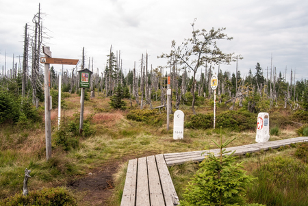 guidepost: Marfleckl bellow Lusen hill in Bavarian Forest mountains with border stones, guidepost and timber pathway with