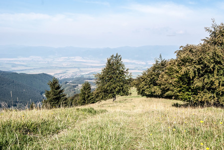 steep mountain meadow with trees and blue sky bellow Lysec hill in Velka Fatra mountains in Slovakia