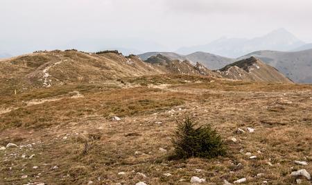 mala fatra: sharp mountain ridge covered by mountain meadow in autumn Mala Fatra mountains near Maly Krivan hill in Slovakia