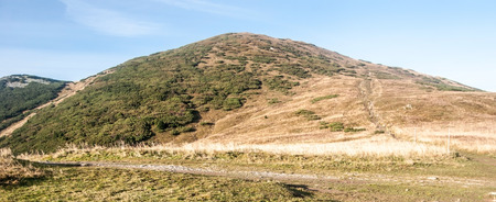 mala fatra: highest hill of Mala Fatra mountains - Velky Krivan hill from Snilovske sedlo mountain pass during autumn meadow with clear sky Stock Photo