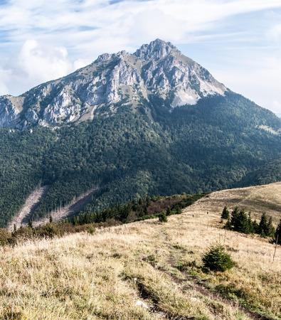 mala fatra: roky limestone Velky Rozsutec hill from mountain meadow on Poludnovy grun hill in autumn Mala Fatra mountains in Slovakia Stock Photo