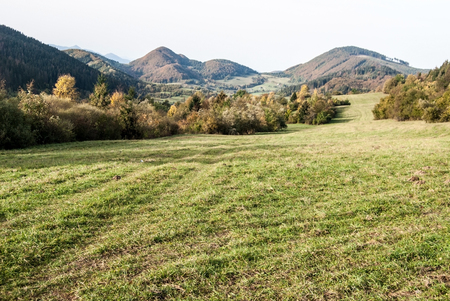autumn meadow with colorful trees and hills on the background in Slovakia near Kysucke Nove Mesto city