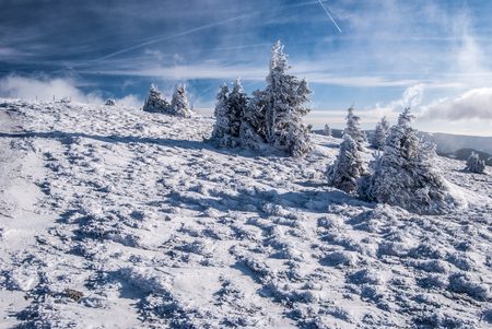 alpen: winter mountain meadow with snow, isolated small trees and blue sky with clouds in Fischbacher Alpen mountains in Styria Stock Photo
