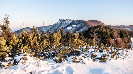 mala fatra: Klak hill from Revan hill in winter Mala Fatra mountains with snow and clear sky