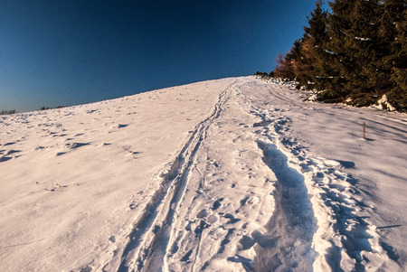 mala fatra: Revan hill with snow, trees and clear sky in southernmost part of Mala Fatra mountains above Fackovske sedlo in Slovakia