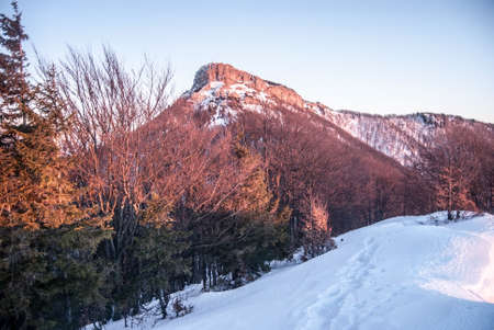 mala fatra: rocky limestone colorful Klak hill with snow, trees and clear sky during sunset in Mala Fatra mountains in Slovakia
