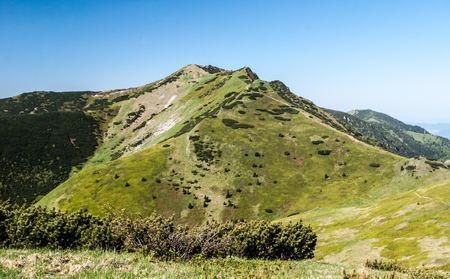 Maly Krivan hill from sedlo Bublen pass in Krivanska Mala Fatra mountain range during spring day with clear sky