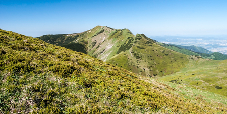 view to Maly Krivan hill during hiking from sedlo Bublen to Pekelnik hill in Krivanska Mala Fatra mountains during spring day with clear sky