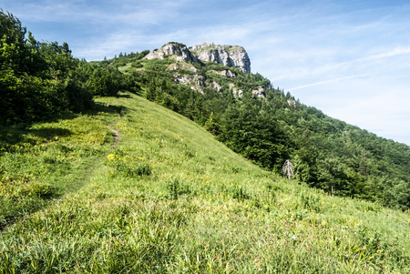 rocky limestone Klak hill with mountain meadow and deciduous forest bellow in Mala Fatra mountains in Slovakia