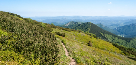 Mala Fatra mountains in Slovakia bellow sedlo Bublen with hiking trail, Kraviarske, Sokolie and other hills, Vratna dolina valley, mountain meadow, pinus mugo bush and blue sky