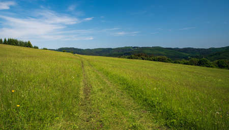 Beautiful Bile Karpaty mountains above Nedasova Lhota village in Czech republic with meadow, small forest on the right and hills on the background during springtime day 免版税图像