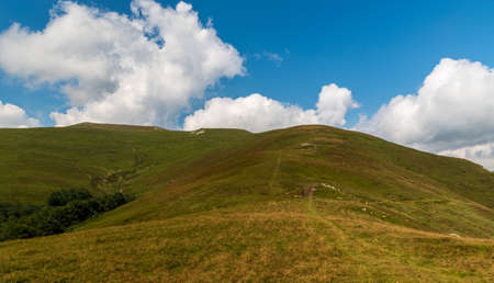 Beautiful Muntii Valcan mountains above Jiul de Vest river valley in Transylvania region in Romania with hills covered by meadows with few rocks
