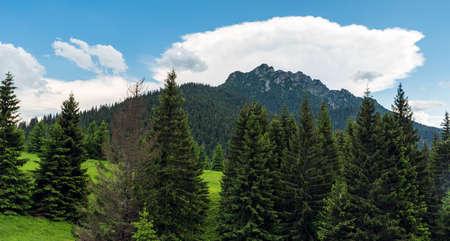 Rocky Velky Rozsutec hill from Sedlo Medzirozsutce saddle in Mala Fatra mountains in Slovakia Reklamní fotografie