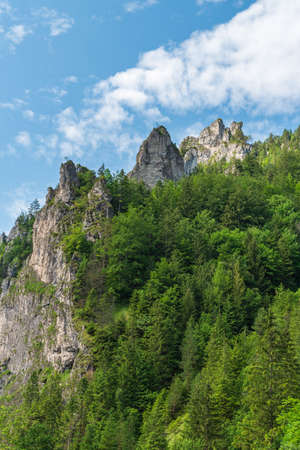 Rocks with trees around above Tiesnavy in Vratna dolina valley in Mala Fatra mountains in Slovakia Reklamní fotografie