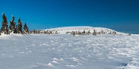 Jeseniky mountains with Vysoka hole and Praded hill with communication tower in Czech republic during beautiful winter day with clear sky