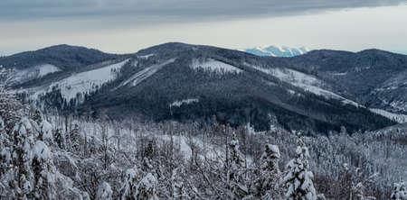 Kysucke Beskydy with highest Velka Raca hill and Zapadne Tatry mountains from Kykula hill above Oscadnica village on slovakian - polish borders during freezing winter day