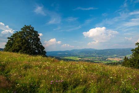 View from Mala Kykula hill near Jablunkov town in Moravskoslezske Beskydy mountains in Czech republic during beautiful summer evening Reklamní fotografie