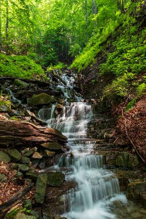 Vysuty potok creek with cascades and trees around in Moravskoslezske Beskydy mountains above Moravka village in Czech republic
