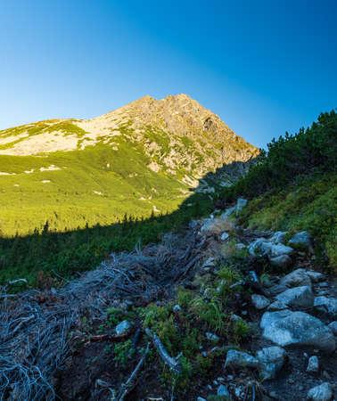 Morning Vysoka Tatry mountains near Sliezsky dom hotel with Kvetnicoca veza mountain peak and stone hiking trail in Slovakia