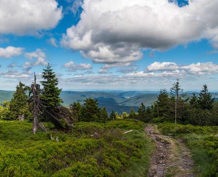 View from hiking trail near Maly Ded hill summit hill above Svycarna hut in Jeseniky mountains in Czech republic Reklamní fotografie