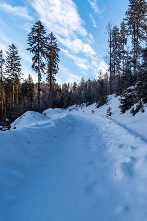 winter scenery with snow covered forest road, trees and blue sky with clouds bellow Misaci hill summit above Moravka village in winter Moravskoslezske Beskydy mountains in Czech republic Reklamní fotografie
