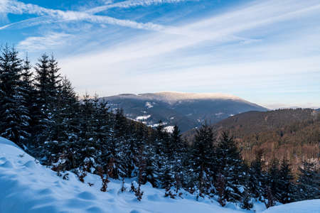 Travny hill from forest road bellow Misaci hill summit above Moravka in winter Moravskoslezske Beskydy mountains in Czech republic