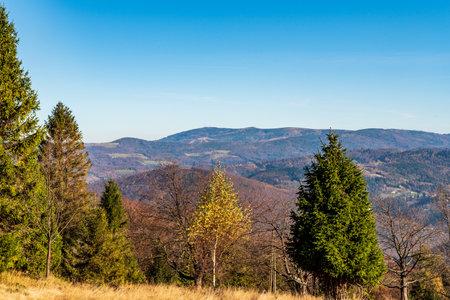 Beskid Slaski mountains with Skrzyczne hill from meadow bellow Wielka Czantoria hill on polish - czech borders during beautiful autumn day Reklamní fotografie