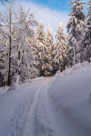 Winter mountain scenery with snow covered hiking trail, trees and blue sky with clouds in Moravskoslezske Beskydy mountains in Czech republic Reklamní fotografie