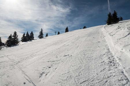 Ski slope with few trees and blue sky on Ovcarna ski resort in Jeseniky mountains in Czech republic Reklamní fotografie