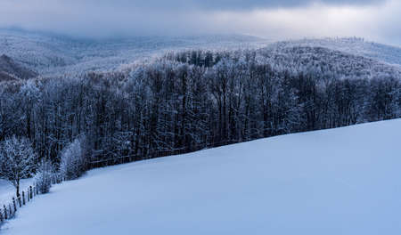 Freezing winter scenery with snow covered meadow and hills covered by deep forest above Bila Voda village in Rychlebske hory mountains in Czech republic near borders with Poland Reklamní fotografie