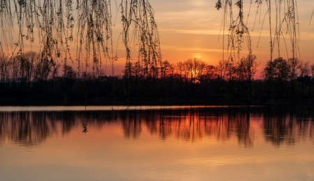 sunset with pond, tree branches, forest on the background and colorful sky - CHKO Poodri near Jistebnik village in Czech republic