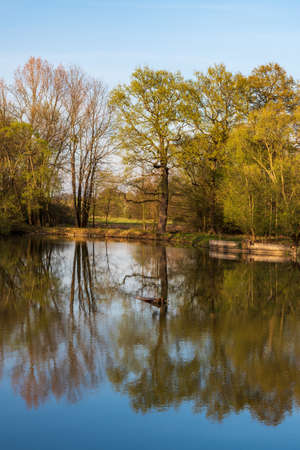 Pond with trees mirroring on waterground and clear sky in springtime CHKO Poodri near Ostrava city in Czech republic