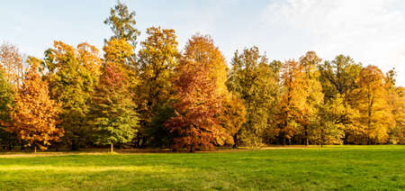 Autumn scenery with meadow, colorful trees and blue sky - Park Bozeny Nemcove public park in Karvina city in Czech republic