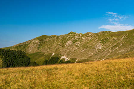 Steep mountain ridge covered by meadows with limestone rocks - part of Oslea mountain ridge in Valcan mountains in Romania during summer morning with blue sky