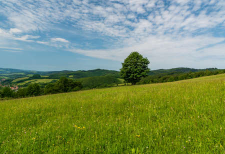 Springtime mountain scenery wirh meadow with isolated tree, hills, small Nedasova Lhota village in valley and blue sky with clouds - Bile Karpaty mountains in Czech republic Reklamní fotografie