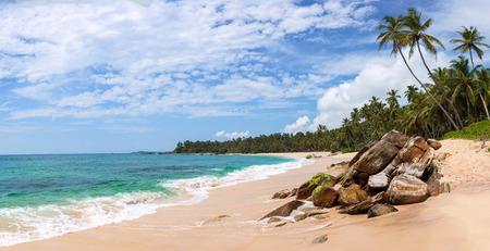 lanka: Panorama of beautiful tropical beach in Sri Lanka, Asia