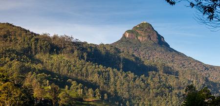 adams: The view on top of the mountain Adams Peak at sunrise, Dalhousie, Srilanka, Asia