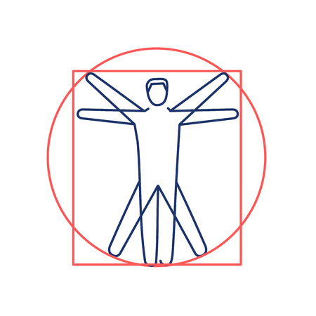 healing: Proportion of human body red and blue linear icon on white background | flat design alternative healing illustration and infographic Illustration