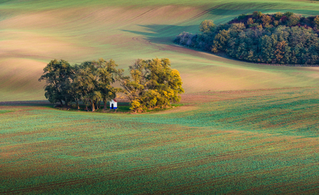 Beautiful colorful autumn landscape with small chappel in curved fields in south moravia