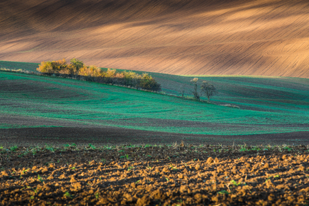 Beautiful colorful autumn landscape with curved fields in south moravia Stock Photo
